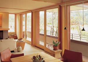 Andersen French Sliding Patio Door